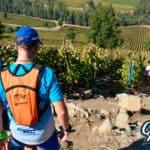 4° Trail Corriendo Entre Viñedos